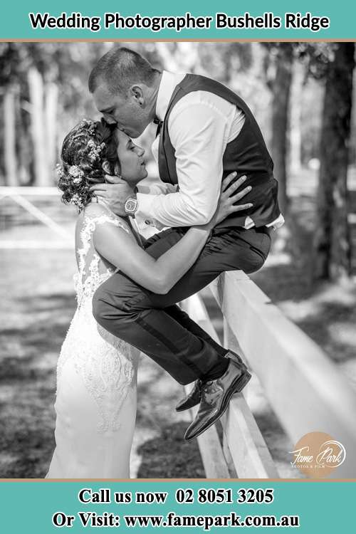 The Groom sitting on the fence while kissing the Bride at the forehead Bushells Ridge NSW 2259