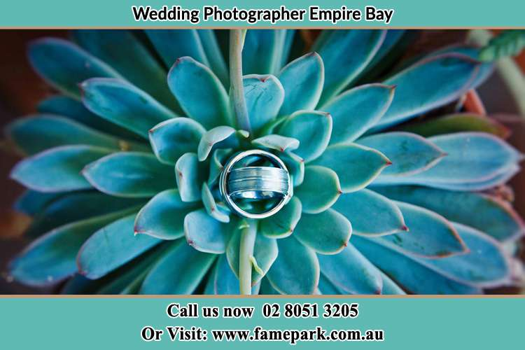 Photo of the wedding ring design at the top of the plant Empire Bay NSW 2257