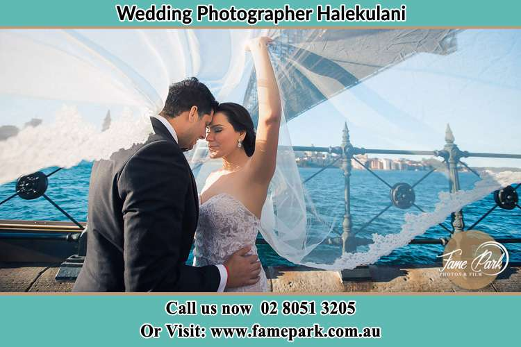 Photo of the Groom and the Bride kissing Halekulani NSW 2262