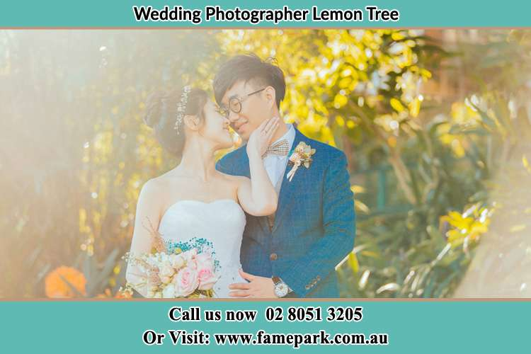 Photo of the Bride and the Groom Lemon Tree NSW 2259