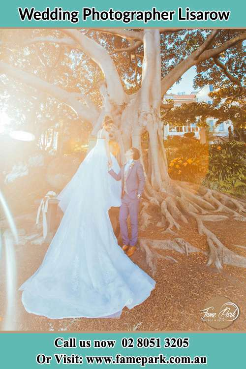 Photo of the Bride and the Groom looking each other besides the tree Lisarow NSW 2250