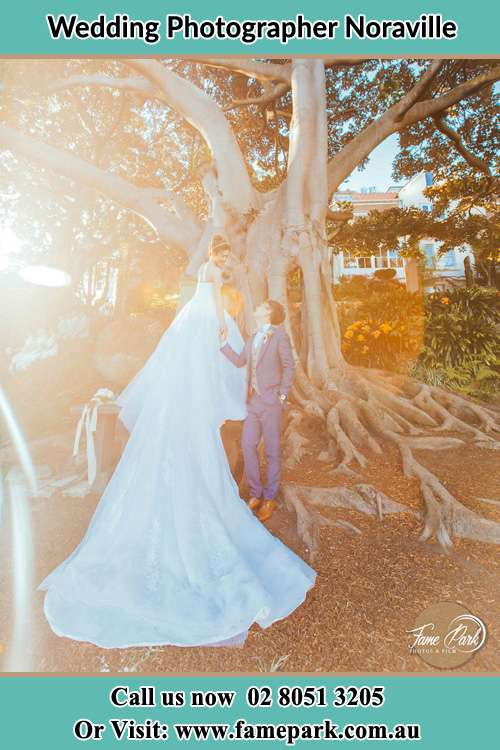 Photo of the Bride and the Groom looking each other besides the tree Noraville NSW 2263