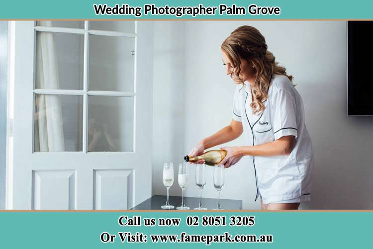 Photo of the Bride pouring wine on the glasses Palm Grove NSW 2258
