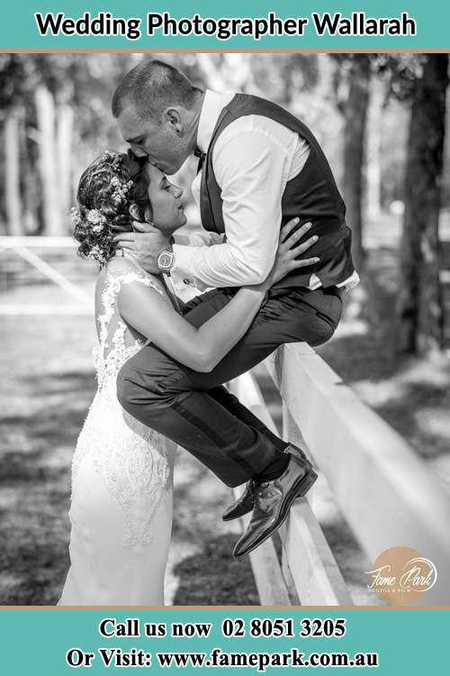 Photo of the Groom sitting on the fence kissing the Bride at the forehead Wallarah NSW 2259