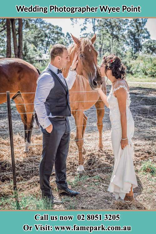 Photo of the Groom and the Bride caressing a horse Wyee Point NSW 2259